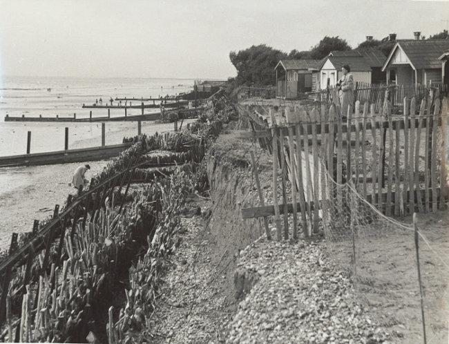 s_west-beach-faggotting-1952