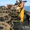 Marine Socio Economics