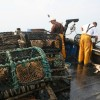 UK seafood topping world's menus