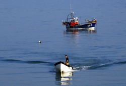 Next steps agreed for Selsey Haven