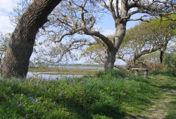 Benefits of Coastal Paths