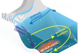 Deep Sea Microplastics