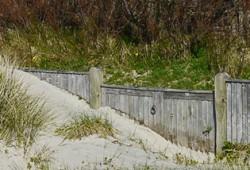Climate Change & Coastal Communities