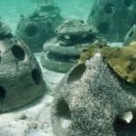 Reef to protect endangered UK crayfish